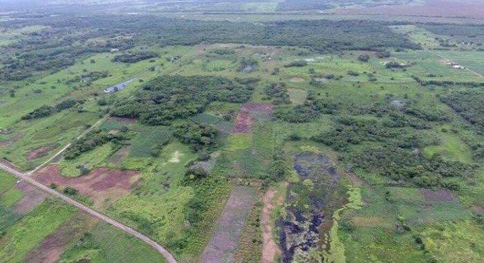A fost descoperit cel mai mare și mai vechi complex mayaș