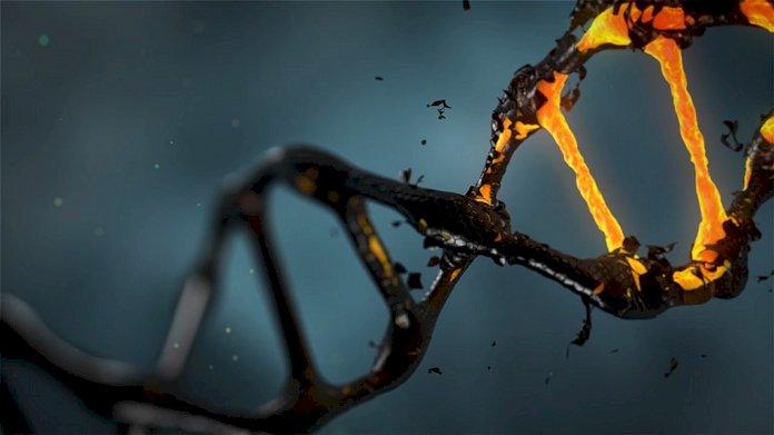 Amprenta genetică, semnătura strămoșilor în AND-ul nostru