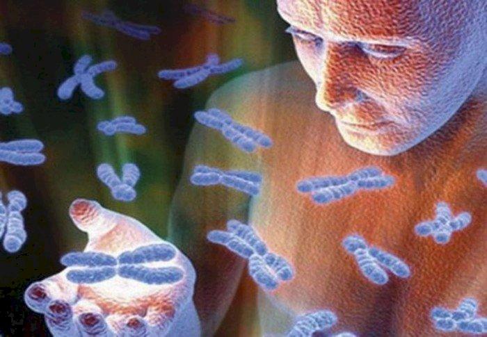 Ultimele studii despre ADN – Noi păstrăm memoria tuturor strămoşilor de la facerea lumii!